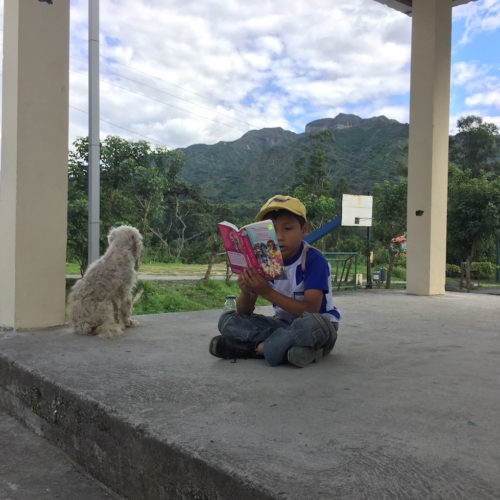 A kid reading a book